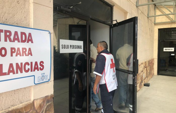 Abejas atacan a empleado de aseo urbano en el rastro municipal