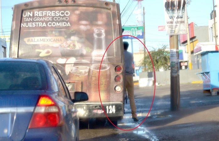 Viaja mosca en peligroso camión urbano