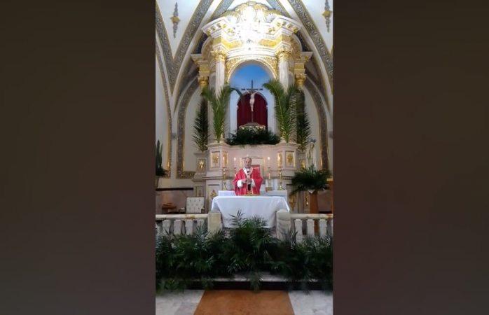 Celebra iglesia católica domingo de ramos