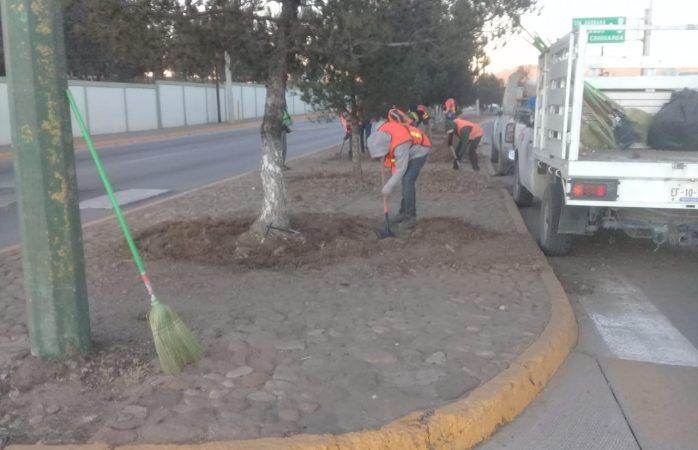 Intensifica servicios públicos medidas de limpieza en la ciudad