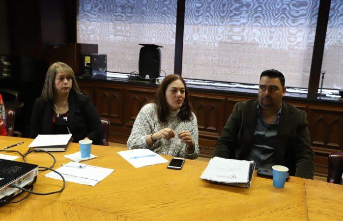 Analiza comité de ecología sanción a productos cárnicos
