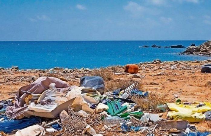 Convocan a gran limpieza global por 50 años del día de la tierra