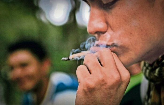 Comisiones del senado van por despenalizar marihuana