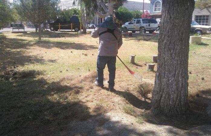 Retiran basura y hierba de tres parques en juárez