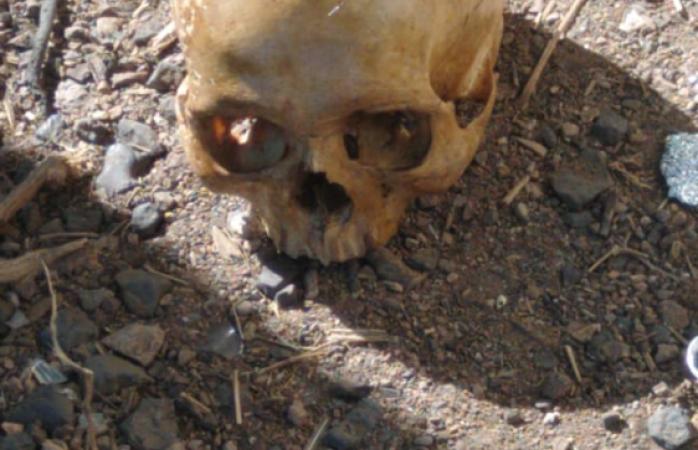 Hallan restos humanos en vialidad ch-p
