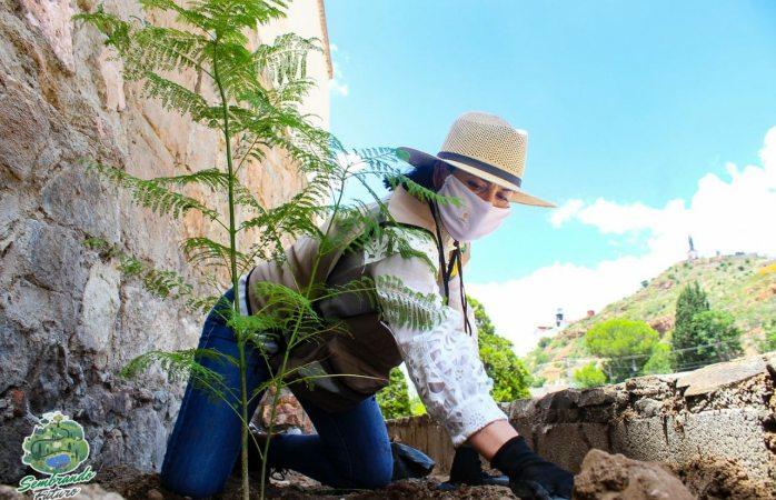 Sol Sánchez reforesta el parque lineal