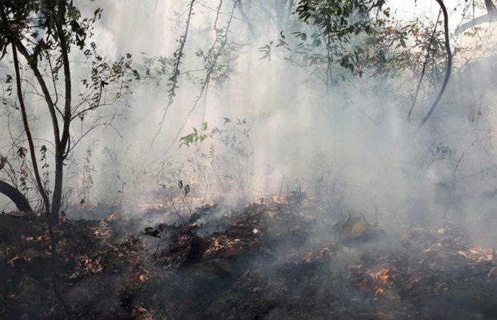 Impondrían multa de 2.6 mdp a joven de TikTok por incendio en Tepoztlán