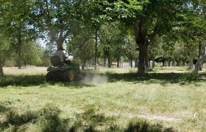 Atendió servicios públicos más de 330 parques en mayo