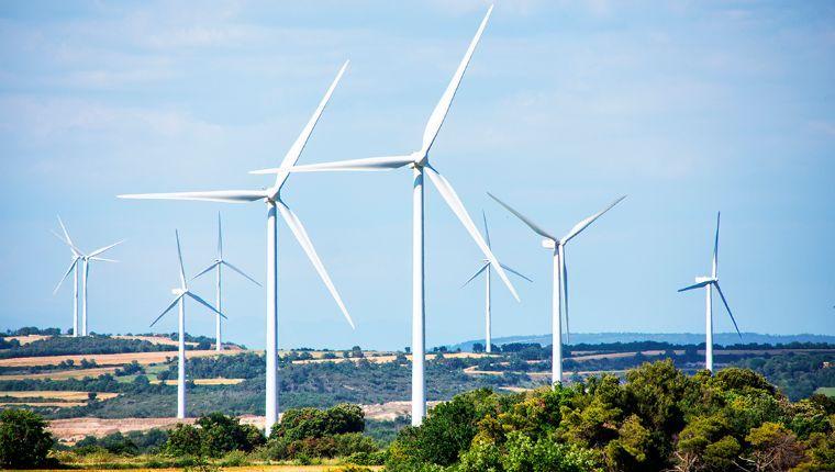 Reclaman por freno a energías renovables