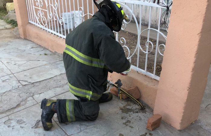Atienden fuga de gas en manguera porosa