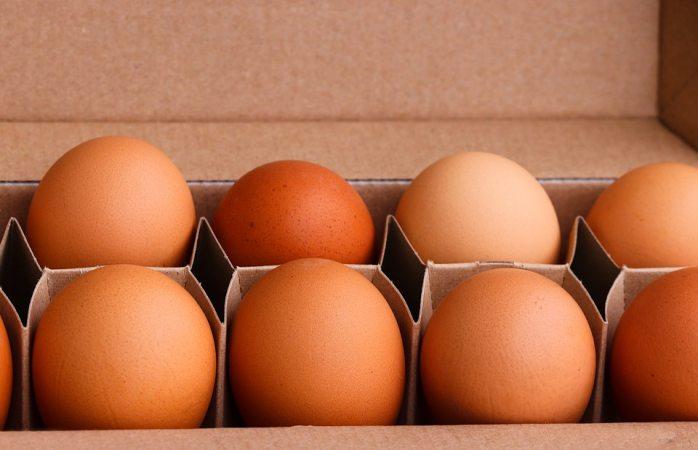 Señalan que alimentos con vitamina d protegen contra el covid