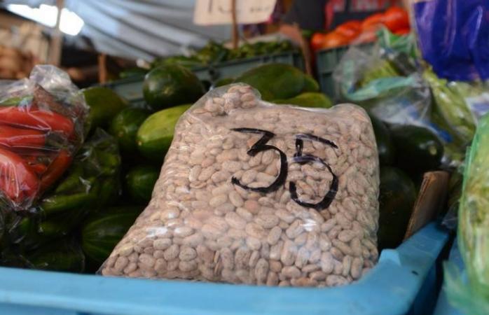 En riesgo cultivos del sector primario para ciclo 2021