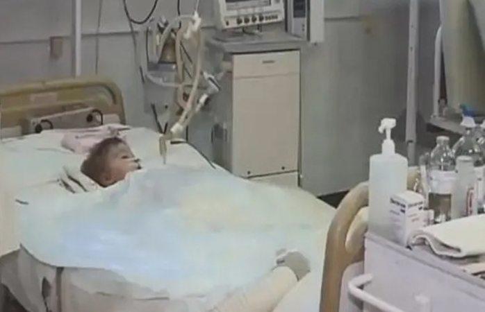 Tras ataque de perros muere niño de dos años en ucrania